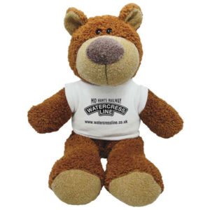 F140 15 Inch Buster Bear with T-Shirt