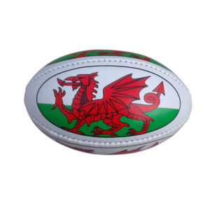 F142 Mini Promotional Rugby Ball