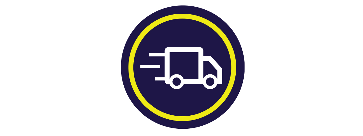 Fast Delivery and Tracking Icon