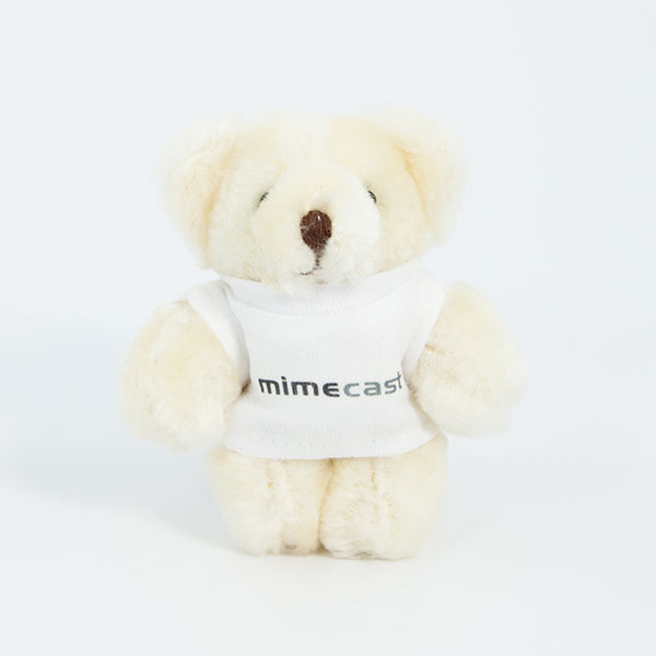 9cm Baby Bear With T-Shirt