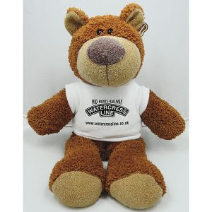 15 Inch Buster Bear with T-Shirt