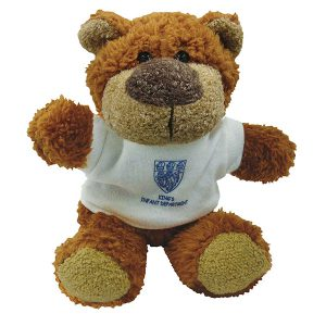 8 Inch Buster Bear with T-Shirt